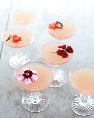 Lillet Rose - Brucnch Cocktail