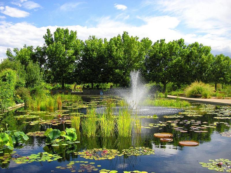 Denver Bontanic Gardens