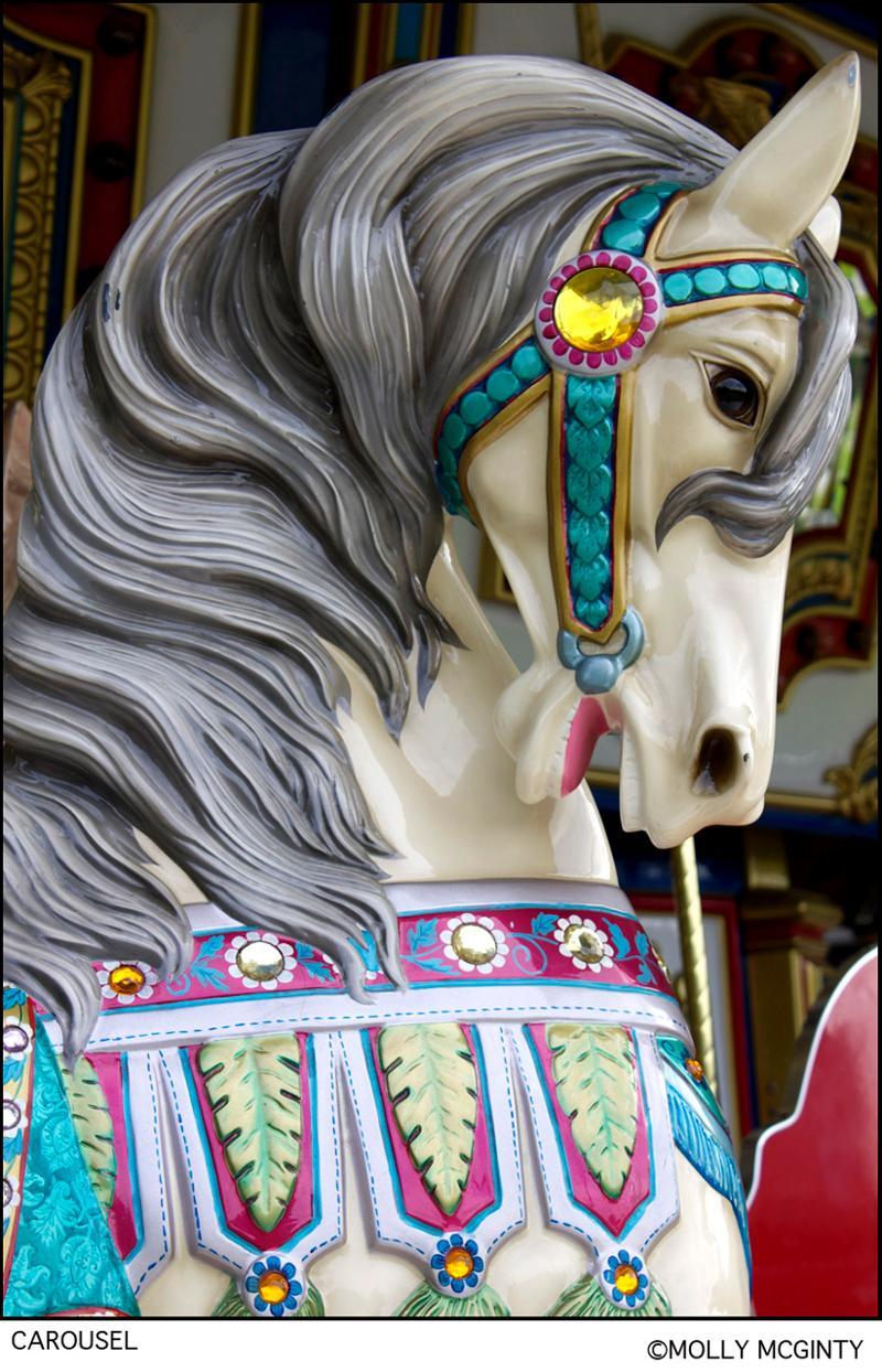 DSLR - Carousel