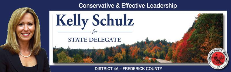 Elect Kelly Schulz banner