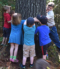 photo of kids hugging a tree