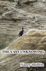 vast unknowning