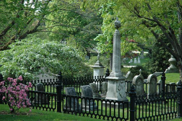 Mount Auburn Spring