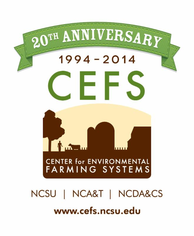 CEFS' 20th Anniversary logo