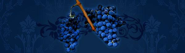 grapes-banner.jpg