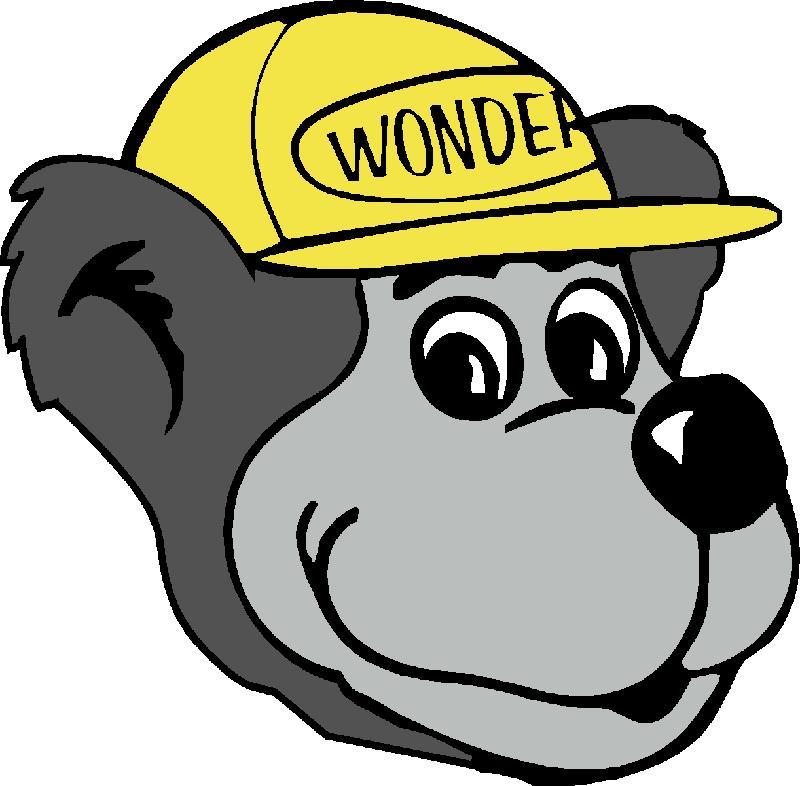 Wonder Bear head