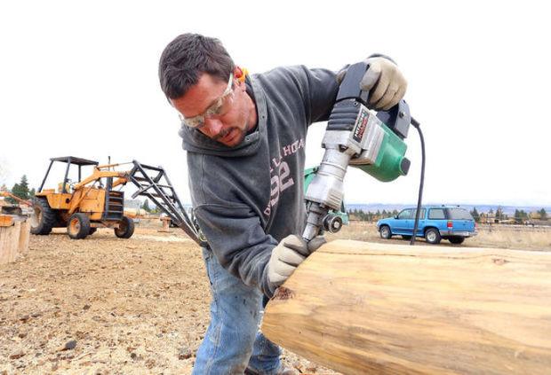 Man sawing log