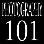 101 photo