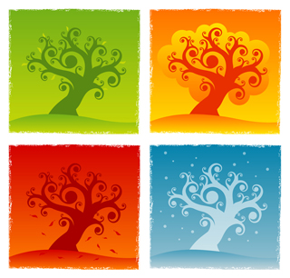 Illustration of tree in 4 seasons