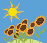sun & sunflower illustration