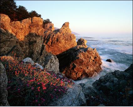 Rocky seashore photo