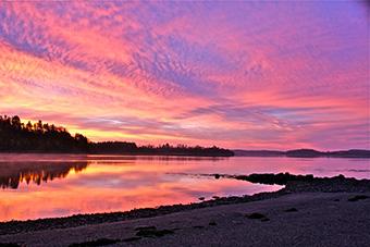 MSCN 2011 Photo Contest winning photo