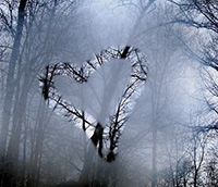photo of heart drawn on foggy window