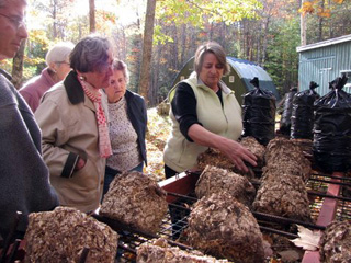Photo of CSC members visiting Oyster Creek Mushroom Co.