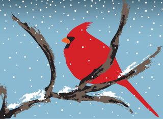 Illustration of cardinal in the snow