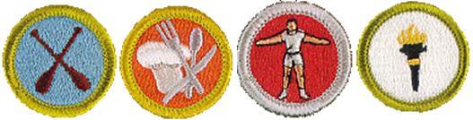 Wellness Merit Badges