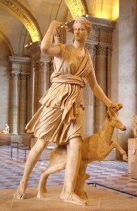 Artemis SM