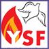 YSF 4-5-10