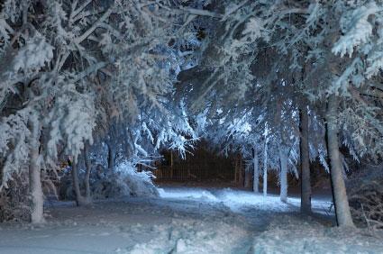 Snowy trail 3-26-13