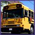 school bus 5-3-10