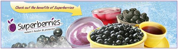 Superberries Email Newsletter
