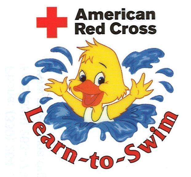Red cross swimming lessons for adults
