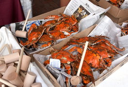 Craft Beer and crabfest