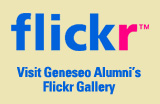 Flickr gallery graphic