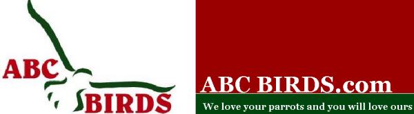 ABC Bird Logo