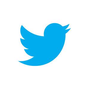 Twitter logo 300pt