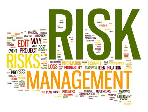 risk wordle