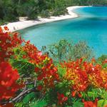 Don Hebert Trunk Bay with flamboyant