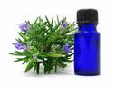 Blue Bottle Lavender
