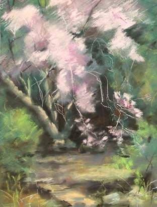 Kullaf Magnolia