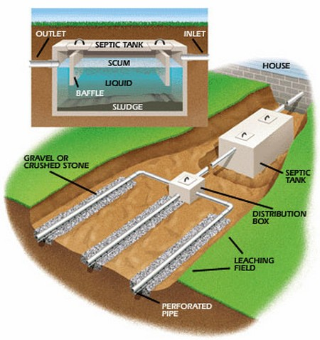 Septic Fields Are Constructed In Such A Manner As To Allow
