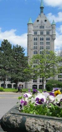 SUNY Flowers