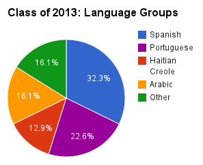 Class of 2013 by language