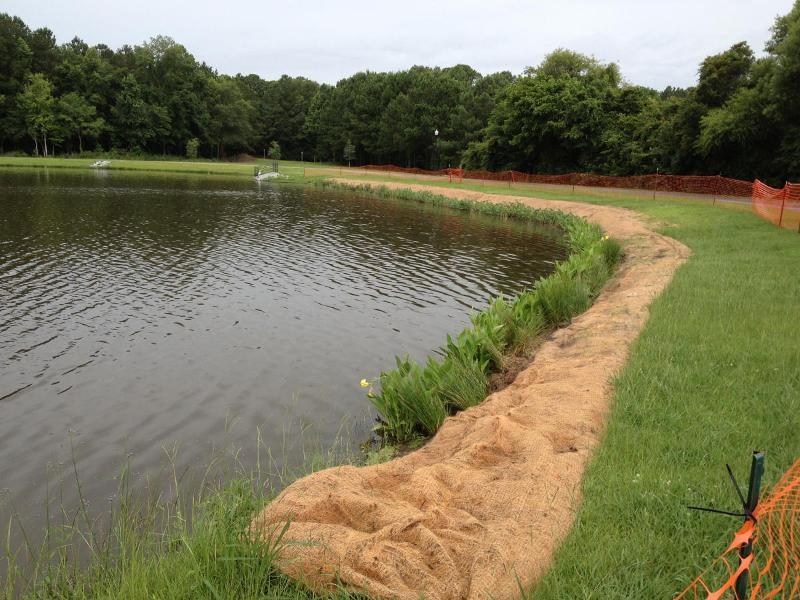 Shorescaping at Goose Creek