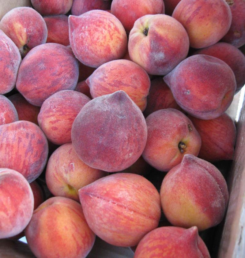 peaches from pete