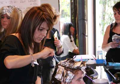 Organic Salon Systems COlor Certification