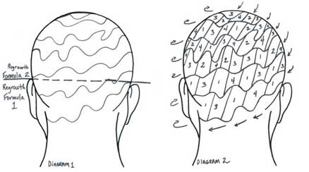 Hair Diagrams
