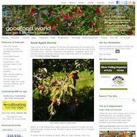 GoodFood World Webpage