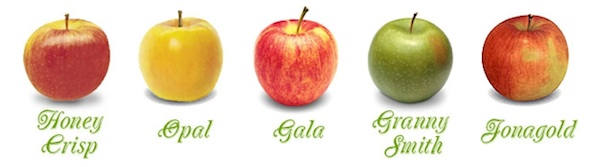 Apple Variety Line Up