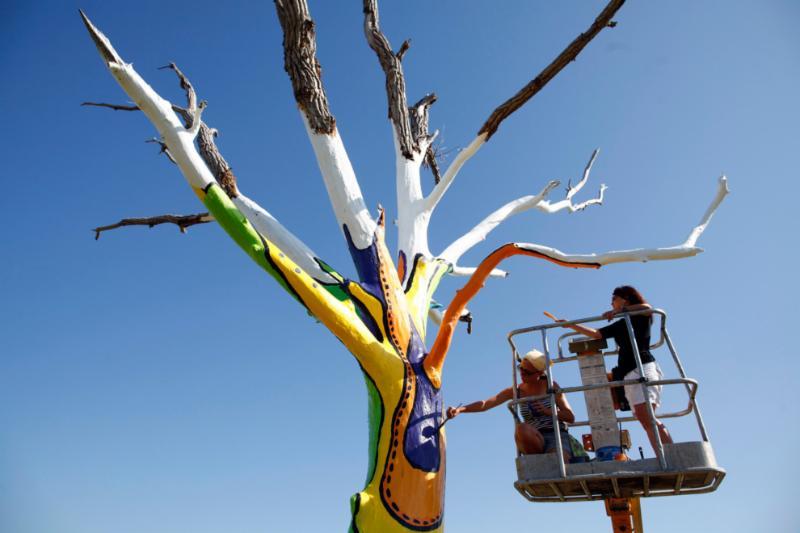 Painted tree, Joplin, MO