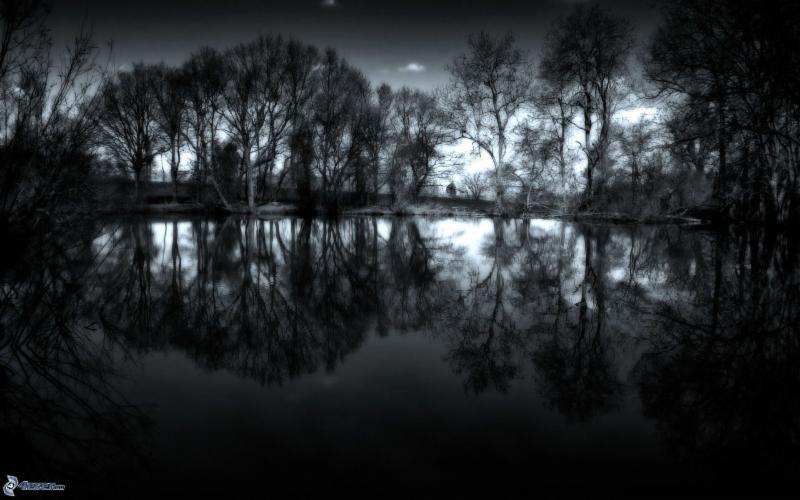 Lake & dark forest