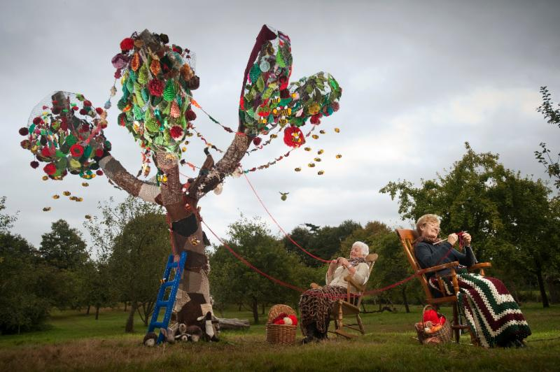 Yarn-bombing the apple tree