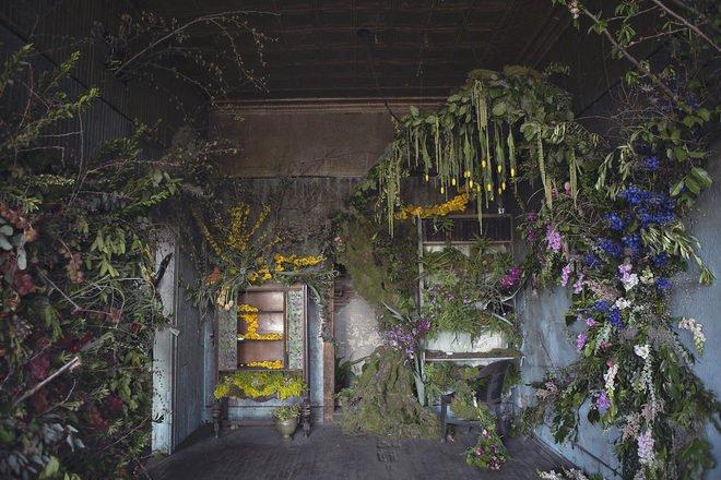 Abandoned house refloralized