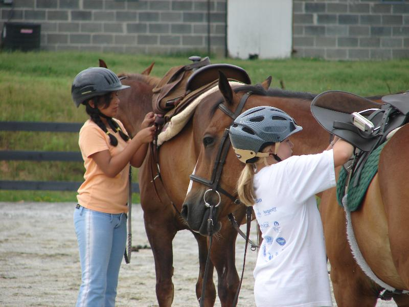 how to run a horse camp