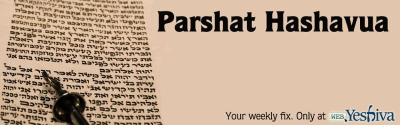 Parshat Hashavua with Rabbi David Sedley