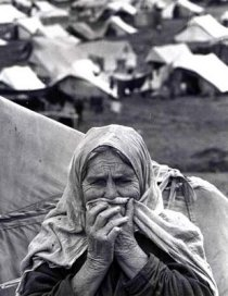 Palestinian woman refugee